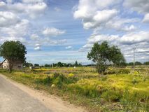 Nature. Cumulus clouds. Meadow. Dirt road Stock Photography