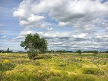 Nature. Cumulus clouds. Meadow Stock Photo