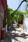 Nature d'été d'architecture de bâtiments historiques de Rhodos Grèce Photo libre de droits