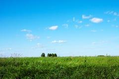Nature d'été, paysage Images stock