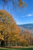 Nature d'automne Image stock