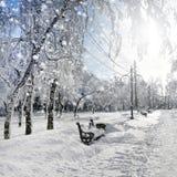 Nature d'hiver, tempête de neige Photographie stock libre de droits