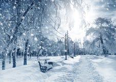 Nature d'hiver, tempête de neige Photo stock