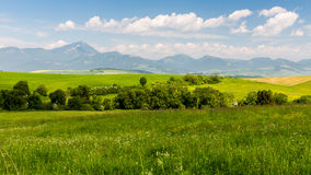 Nature dans la région de Liptov, Slovaquie en été 2015 Photographie stock libre de droits