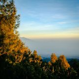 Nature dans le bâti Bromo images libres de droits