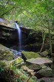 Nature dans Phukradueng Photos stock