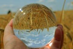 Nature dans une boule image libre de droits