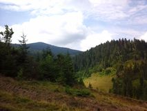 Nature de Carpathiens Photos libres de droits
