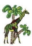 nature de l'Afrique Image stock