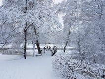 Nature de l'hiver Photo libre de droits