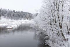 Nature de l'hiver Photos libres de droits