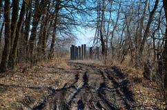 Nature de l'Ukraine photos stock