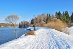 Nature de la Finlande au printemps Images libres de droits