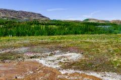 Nature de la vallée de geyser en Islande image libre de droits
