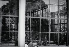 Nature de miroir photographie stock libre de droits