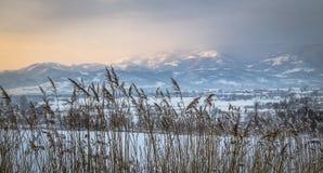 Nature de paysage de la Transylvanie Photos stock