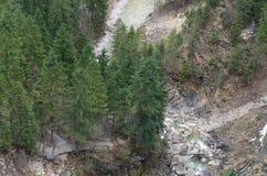 Nature de rivières Images stock