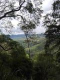 Nature de Sri Lanka Photo libre de droits