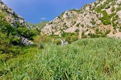 Nature de vert de canyon de rivière de Krupa Image stock