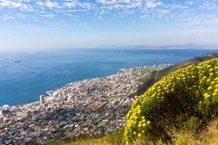Nature de ville de mer Image libre de droits