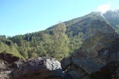 Nature des montagnes d'Altai Photo libre de droits