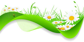 Nature Banner Stock Photography