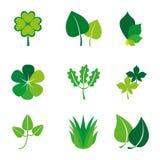 Nature design Stock Photos