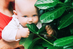 Nature discovery by baby Stock Photo