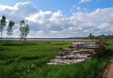 Nature at district of Kuldiga. Stock Photography