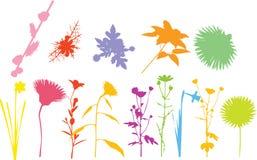 Nature diversity. Royalty Free Stock Photos