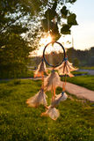 Nature Dreamcatcher Royalty Free Stock Images