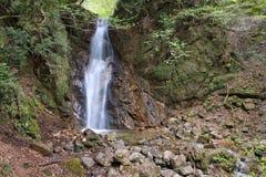 Nature du Japon Image stock