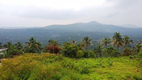 Nature du Kerala photos stock