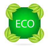 Nature eco symbol and leafs Stock Photos