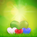 Nature ecology background with heart , sun and fresh grass garde Stock Image