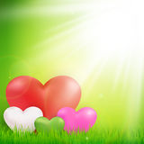 Nature ecology background with heart , sun and fresh grass  Royalty Free Stock Photos
