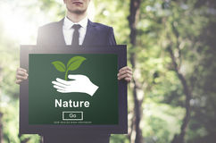 Nature Ecology Environmental Conservation Natural Life Concept Stock Photos