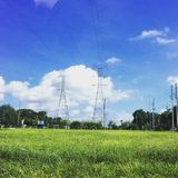 Nature and Electricity. Green grassy field with power lines Royalty Free Stock Photos
