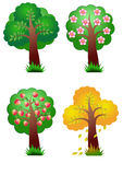 Nature elements four seasons tree Royalty Free Stock Images