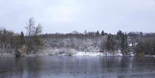 Nature en hiver Photo libre de droits
