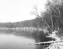 Nature en hiver Images stock