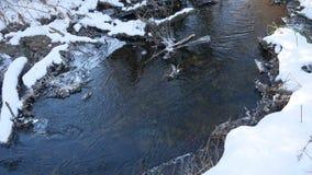 Nature en retard d'hiver d'écoulement de l'eau de rivière de forêt un paysage fondu de glace, arrivée de ressort Image libre de droits
