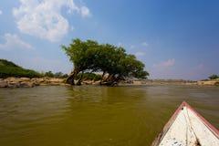 Nature en Thaïlande Photos stock