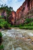 Nature en Zion National Park, Utah images stock