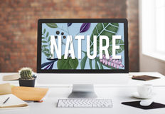 Nature Environment Green Earth Growth Natural Concept Stock Photos