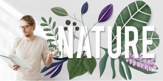 Nature Environment Green Earth Growth Natural Concept Royalty Free Stock Photos