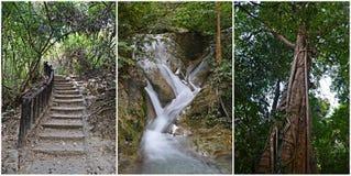 Nature in erawan national park. Beautiful nature in Erawan waterfalls national park in thailand royalty free stock photo