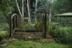 Nature et forêt image libre de droits