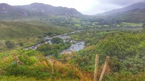 The nature of europe. A beatiful green place in ireland Stock Photo