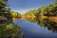 Nature in a european northern country, Sweden, Bagarmosen Stock Images